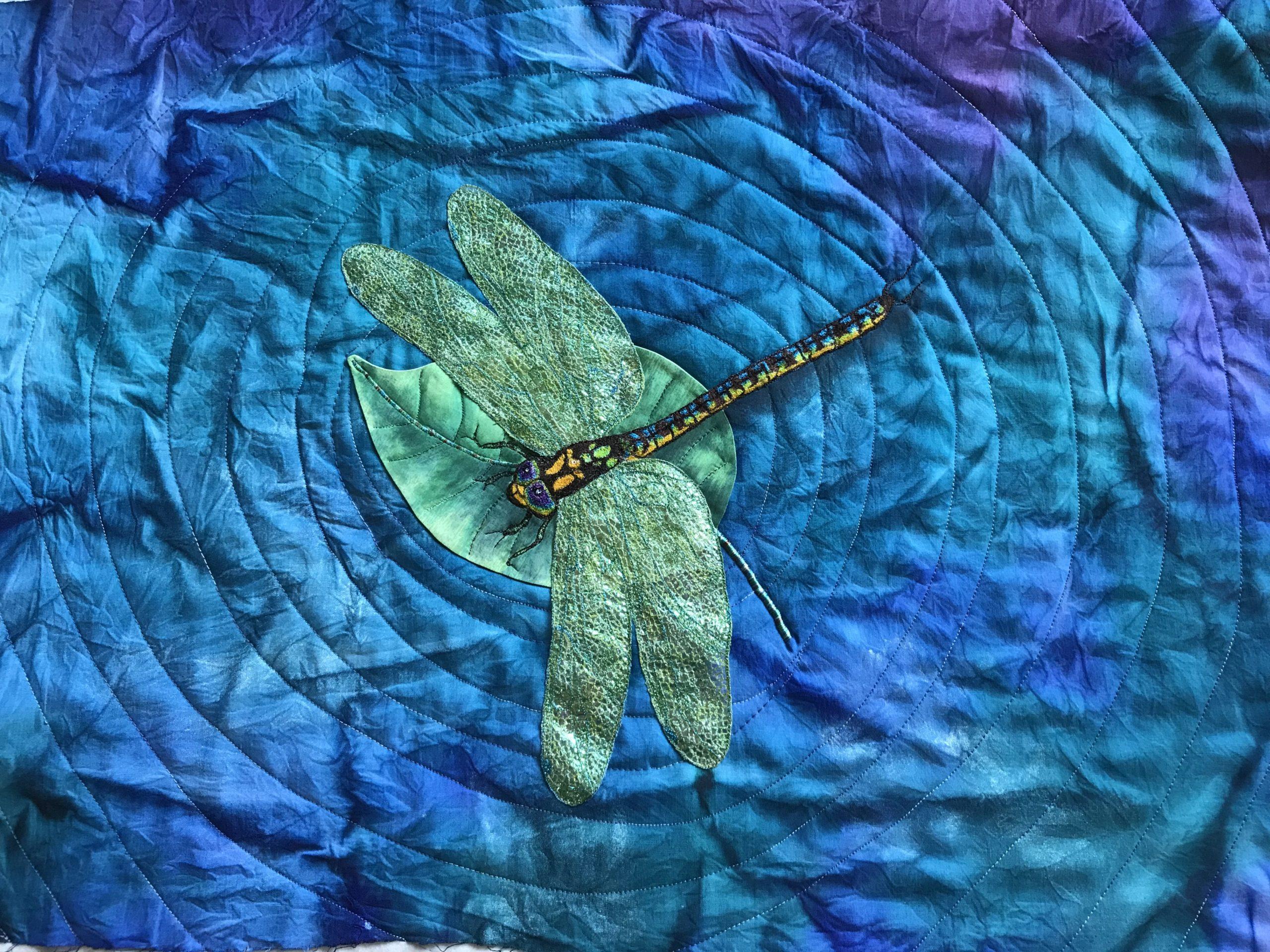 Libelle von Kasia Hanack für unser Interview mit Ihr auf unserem Blog